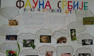 Istrazivacki_radovi_I